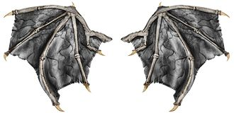 Dark grey realistic dragon wings, isolated on white. Dark grey realistic dragon wings, isolated on white background. Close up stock photo