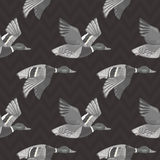 Dark grey vector seamless pattern with flying ducks Royalty Free Stock Photo