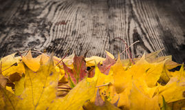 Dark grunge wooden background with yellow leaves Stock Images