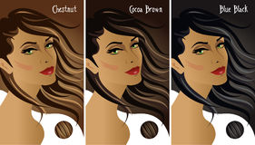 Dark hair colors chart royalty free stock images