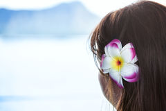 Dark haired girl wearing Hawaiian flower looking at ocean view Royalty Free Stock Photos