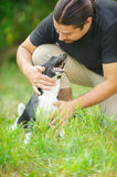 Dark-haired man stroked dog Stock Image