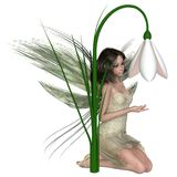 Dark Haired Snowdrop Fairy Kneeling by Winter Flowers Stock Image