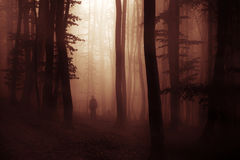 Dark Halloween apparition ghost in forest with fog Stock Image