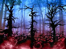 Dark halloween woods background with twisted trees. Illustration Royalty Free Stock Photography