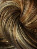 Dark highlight hair texture background Stock Photography