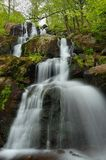 Dark Hollow Falls, Shenandoah Royalty Free Stock Images