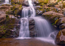 Dark Hollow Falls in Shenandoah National Park Stock Photography