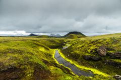 Dark Iceland landscape with green moss. And small river with cloudy sky Stock Photos