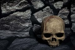 Human Skull With Black and white stone Background royalty free stock images