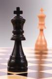 Dark king versus light king Royalty Free Stock Image