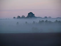 Dark landscape with fog and mist Stock Image
