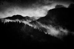 dark landscape with foggy forest at night Royalty Free Stock Images