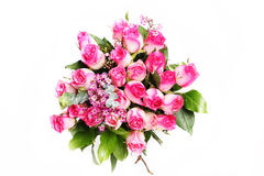 Dark and light pink roses2. Pile of pink rose blossoms on white background Stock Photos