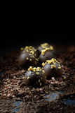 Dark Liqueur Chocolates royalty free stock photo