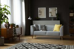 Dark living room in real photo with window with curtain. Dark living room interior in real photo with window with curtains, patterned carpet, retro cupboard and stock images
