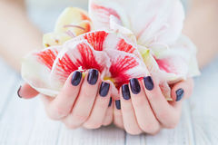 Dark manicure and flowers Royalty Free Stock Photography