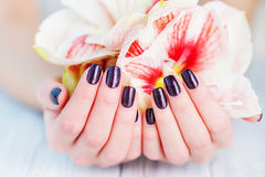 Dark manicure and flowers Royalty Free Stock Photos