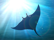 Dark manta ray in ocean. Deep water with light rays. Vector illustration Stock Photography