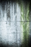 Dark messy grunge concrete texture Stock Image