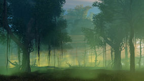 Dark misty forest at dawn or dusk Stock Photography