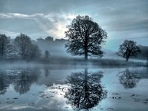 Dark misty sunrise at a local pond Stock Photography