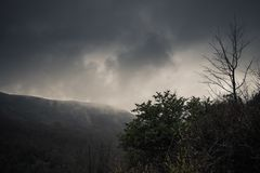 Dark mountain landscape with fog Stock Image