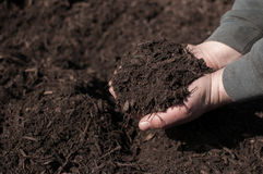 Dark Mulch stock image