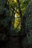 A dark and narrow path Stock Photo