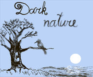 Dark nature. Tree, black and white, bird; nature, landscape, drawing, mystery, lake Royalty Free Stock Image