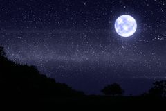 Dark night with many stars and bright moonlight. Above the grass field royalty free stock photography