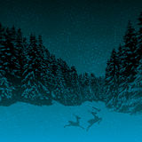 Dark night winter forest blue Stock Photo