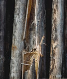 Dark old broken bamboo planks texture. construction background Royalty Free Stock Photos