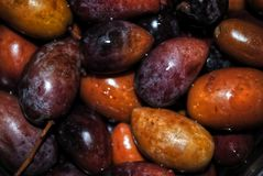 Dark olives texture background Royalty Free Stock Images