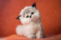 On a dark orange background sits a toy kitten. stock photo