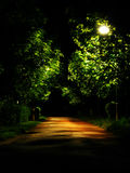 Dark Park Alley Stock Image