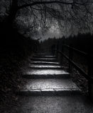 The dark path Royalty Free Stock Photography