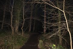 Dark path Stock Photography