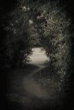 Dark path stock images