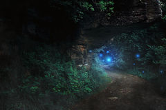 Dark path in the forest to the fairy realm Stock Image