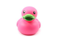 Dark pink bath duck. Dark pink bathtub duck toy with green bill on white background Stock Image
