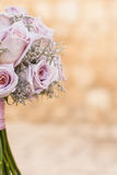 Dark pink roses Royalty Free Stock Images