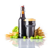 Dark Pint Beer with Hops and Wheat on White Background Stock Photography