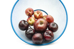 Dark plums with Nectarines Royalty Free Stock Photography