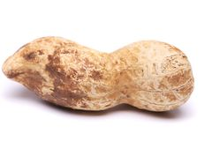 A dark pod of peanuts. See my other works in portfolio Stock Image