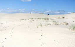 Dark Point Sand Dunes Australia Royalty Free Stock Images