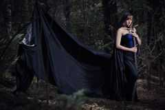 Dark portrait of the forest keeper. Fantasy and Royalty Free Stock Image