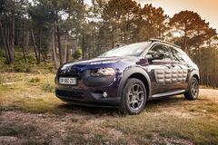 Dark purple Citroen C4 Cactus in the forest Stock Image