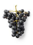 Dark purple grapes. Isolated on white background. Above view stock photography