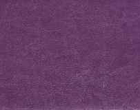 Dark purple leather texture. Background and texture stock photography
